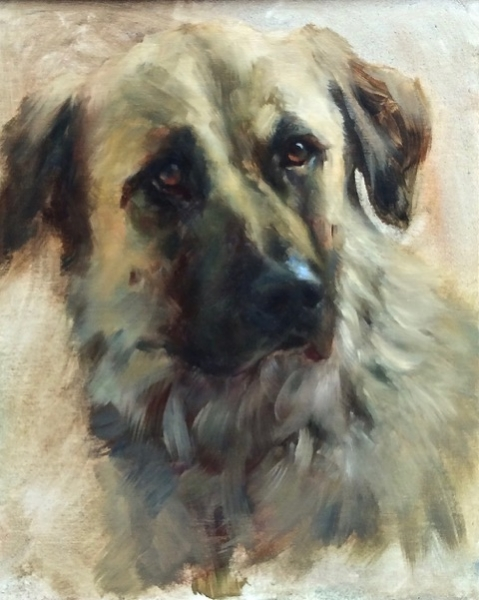 Dog Portrait 1, Johanne Mangi